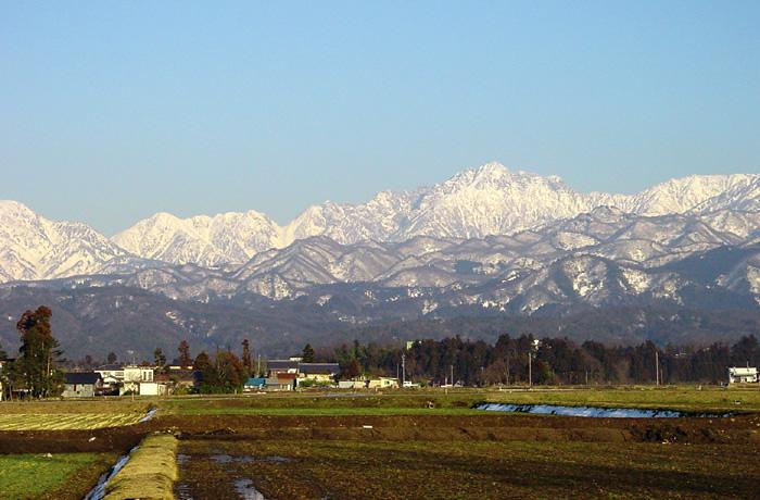 組子 タニハタ 立山連峰 富山