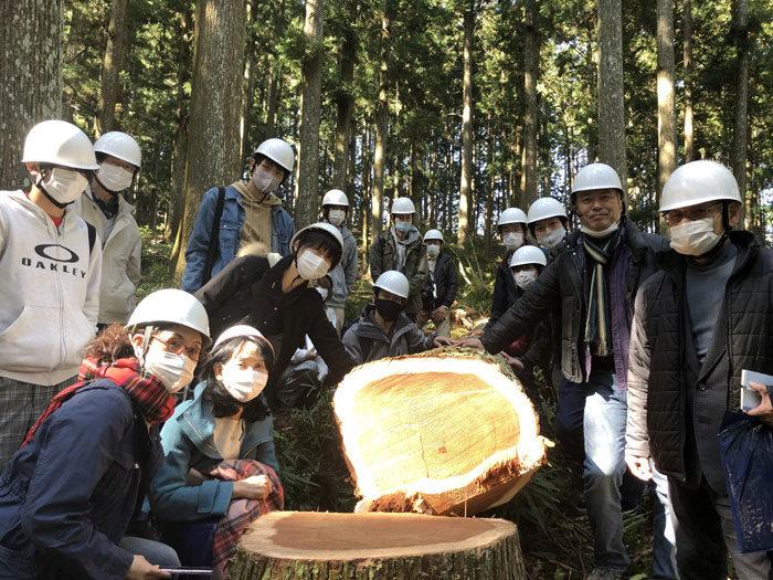吉野杉伐採見学 タニハタ 組子