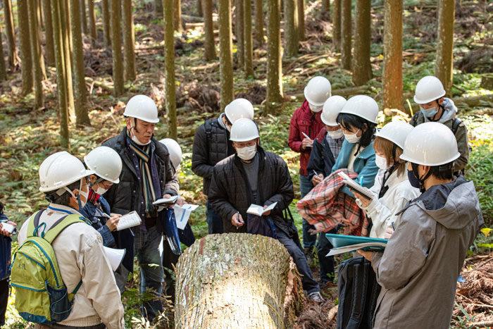 吉野杉見学 富山のものづくり ひのき伐採